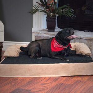 "PAW Orthopedic Memory & Orthopedic 5"" Foam Pet Bed with Bolster (Large)"