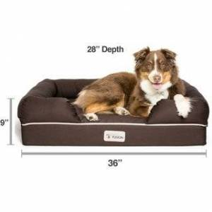 PetFusion Ultimate Memory Foam Dog Bed and Lounge (Large)
