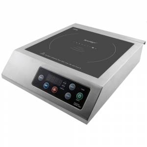 Berghoff Professional Induction Cook Top (Black)