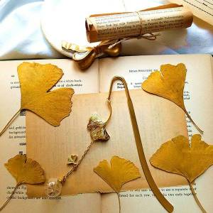 ApolloBox Ginkgo and Dandelion Bookmark