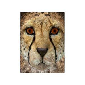 CafePress Cheetah 5'x7'Area Rug