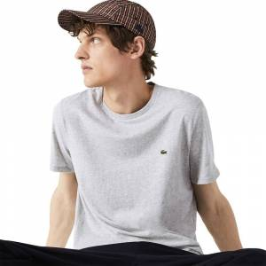 Lacoste Th6709 Short Sleeve T-shirt M Silver; male,