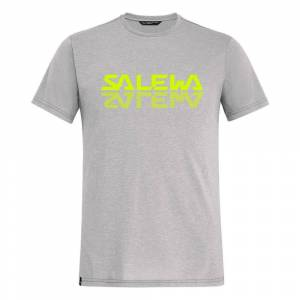 Salewa Reflection Dri-release Short Sleeve T-shirt L Heather Grey; male,