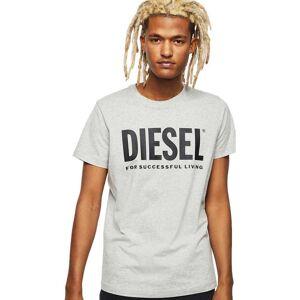 Diesel Diego Logo Short Sleeve T-shirt XXL Light Grey Melange; male,