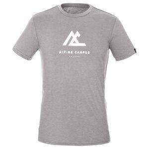 Salewa Geometric Short Sleeve T-shirt L Heater Grey Melange / Campus; male,