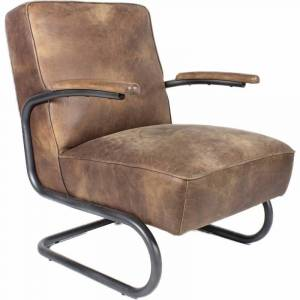 Moe's Home Collection Moe's Perth Leather Arm Chair in Brown