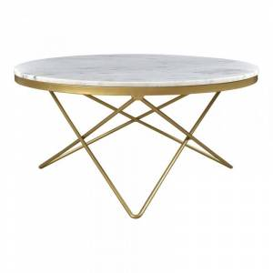 Moe's Home Collection Moe's Home Haley Marble Top Coffee Table in Gold