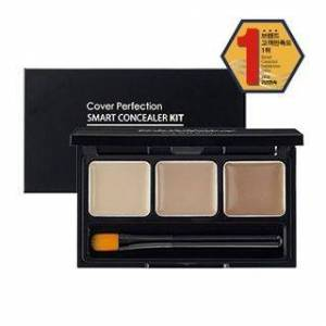 The Saem - Cover Perfection Smart Concealer Kit SPF30 PA++ 4.2g