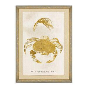 MINDTHEGAP - Caribbean Sea Life Foiled Print - 50x70cm - Arthropoda Crustacea
