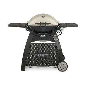Weber Q3200 2 burner Liquid Propane Grill Titanium