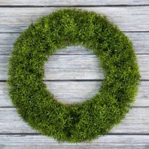 TRADEMARK FINE ART Pure Garden 20 In. Grass Wreath