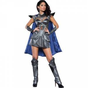 Asstd National Brand A Knight to Remember Adult Costume
