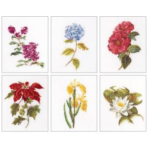 """6-3/4""""X8"""" 18 Count Set Of 6 - Floral Studies 7 On Aida Counted Cross Stitch Kit"""