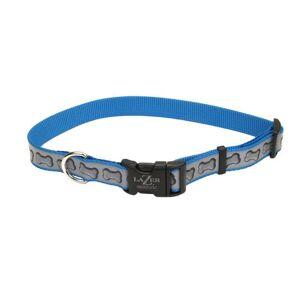 COASTAL PET PRODUCTS Lazer Brite Personalized Dog Collar SM Turquoise