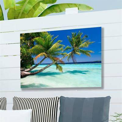 West Of The Wind Palms Duo Canvas Wall Art Multi Bright , Multi Bright