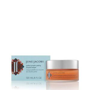 June Jacobs Perfect Pumpkin Peeling Enzyme Masque - 120 ml / 4.0 fl oz