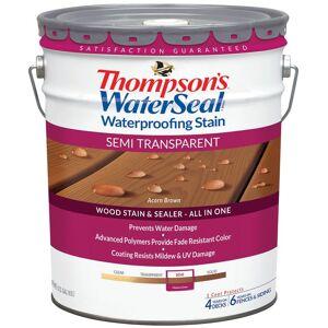 Thompson's Waterseal Th.042845-20 Waterproofing Wood Stain & Sealer, 5 Gallon