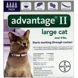 Bayer 81520224-apc Advantage Ii Flea Control Large Cat, 0.108 Oz