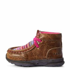 Ariat Kid's Toddler Lil' Stompers Aurora Spitfire Shoes in Brown, Size 7 by Ariat