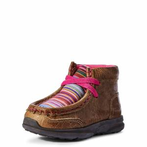Ariat Kid's Toddler Lil' Stompers Aurora Spitfire Shoes in Brown, Size 5 by Ariat