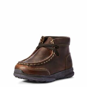 Ariat Kid's Toddler Lil' Stompers Garrison Spitfire Shoes in Brown, Size 7 by Ariat