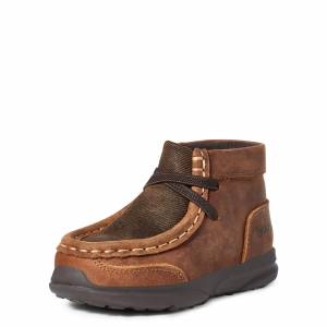 Ariat Kid's Shoes in Brown, 5 K B_Medium by Ariat