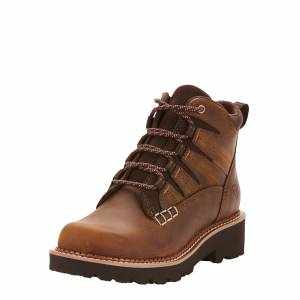 Ariat Women's Canyon II Boots in Distressed Brown Leather, Size 9 B / Medium by Ariat