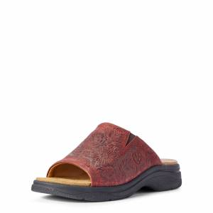 Ariat Women's Bridgeport Sandals in Red Floral Emboss Leather, Size 8 B / Medium by Ariat
