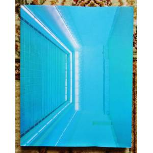 1989 DAN FLAVIN Monograph - SIGNED & INSCRIBED - FLUORESCENT LIGHTS / FLUORESZIERENDEN LICHTS German Art Exhibition DAN FLAVIN [Very Good] [Softcover