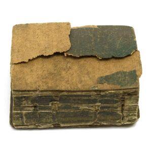 [The Thumb Bible] The Bible. The Eighth Edition (Bible, Thumb Bible) [Taylor, John] [ ]