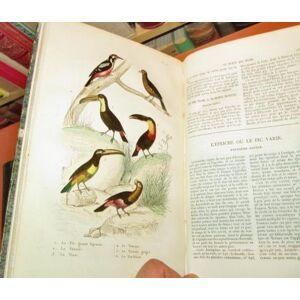 Oeuvres complètes de Buffon : Histoire naturelle - oiseaux (2 vol.), avec les supplemens augmentées de la classification de G. Cuvier accompagnées de