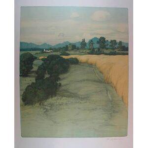 """Farblithographie """"Feldweg"""". Rechts unten mit Bleistift eigenh. signiert. Wien, Gesellschaft f. vervielfältigende Kunst 1908, 44 x 36 cm (55,5 x 45,5"""
