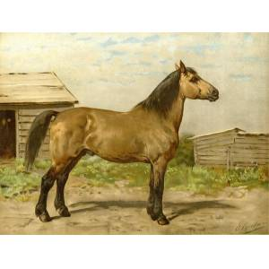 Horse-breeds-Canadian Farm Horse-Paard After EERELMAN, c.1898   [Good]
