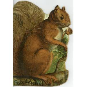 FRISKY, THE SQUIRREL   [Very Good] [Softcover]