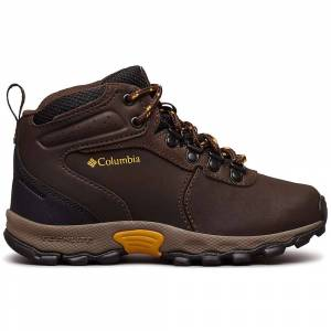 Columbia Footwear Columbia Youth Newton Ridge Boot - 6 - Cordovan / Golden Yellow