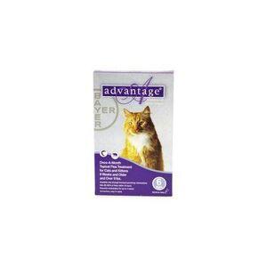 Advantage Cats over 10lbs (Purple) 6 Doses + 1 Free