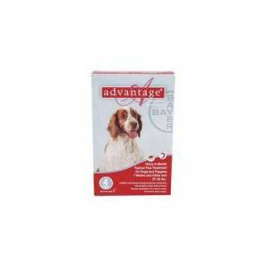 Advantage Large Dogs 21-55lbs (Red) 6 + 1 Dose Free