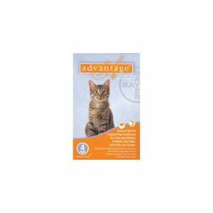 Advantage for Kittens & Small Cats 1-10lbs - 12 + 2 Doses Free