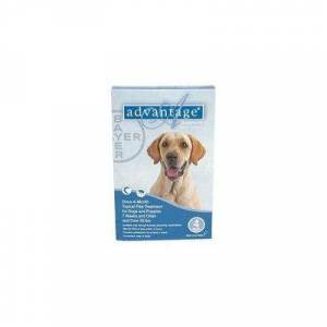 Advantage Extra Large Dogs over 55 lbs (Blue) 6 + 1 Free