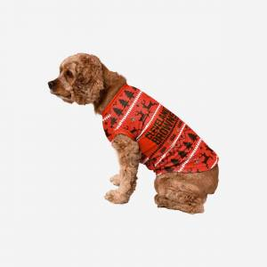 FOCO Cleveland Browns Dog Family Holiday Sweater - L