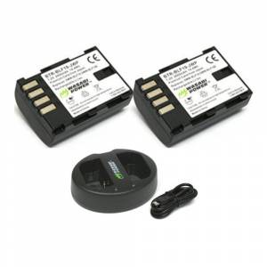 Wasabi Power Wasabi Battery (2-Pack) and Dual USB Charger for Panasonic DMW-BLF19