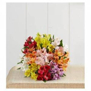 1-800-Flowers Peruvian Lilies, 50 -100 Blooms 50 Blooms Bouquet Only by 1-800 Flowers