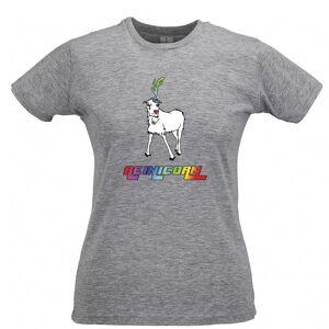 Tim And Ted (XL, Grey) Christmas Womens TShirt Reinicorn Reindeer Unicorn Rainbow Xmas Mythi