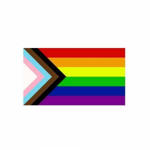Slowmoose (120 x 180cm) 90x150cm LGBT Gay Rainbow Progress Pride Flag