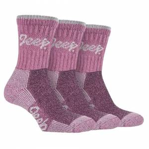 Jeep (4-8 UK, Rose / Cream) JEEP TERRAIN - 3 Pairs Cotton Walking Hiking Socks for La