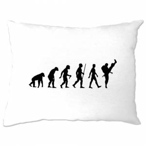 Tim And Ted (One Size, White) Martial Arts Pillow Case The Evolution Of Karate Dojo Sensei S