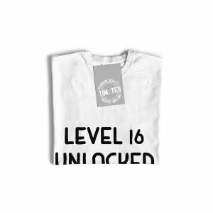 Tim And Ted (M, Grey) Gamers 16th Birthday Long Sleeve Level 16 Unlocked Slogan Console PC V