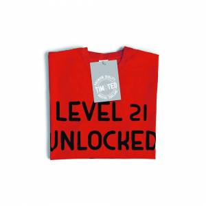 Tim And Ted (L, White) Gamers 21st Birthday T Shirt Level 21 Unlocked Slogan Console PC Vide