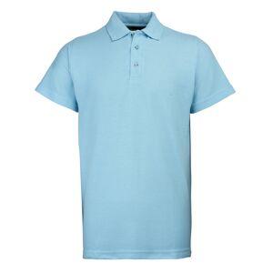 RTY Workwear (5XL, Sky) RTY Workwear Mens Pique Knit Heavyweight Polo Shirt (S-10XL) / Extra