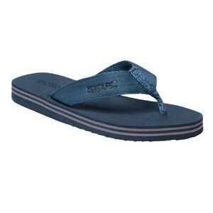 Regatta (8 UK, Seal Grey/Stellar Blue) Regatta Mens Rico Flip Flops